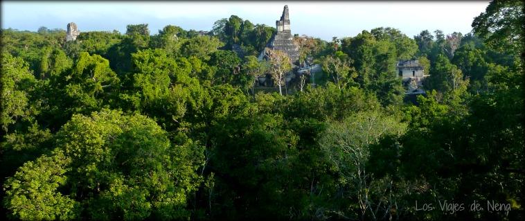 Las ruinas de Tikal, un motivo para viajar a Guatemala