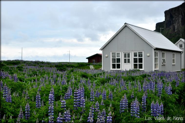 alojamiento en islandia 20