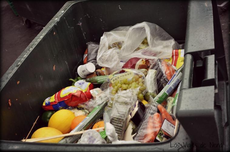 hacer dumpster diving 5