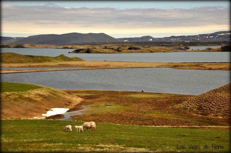 paisajes que se ven desde la carretera