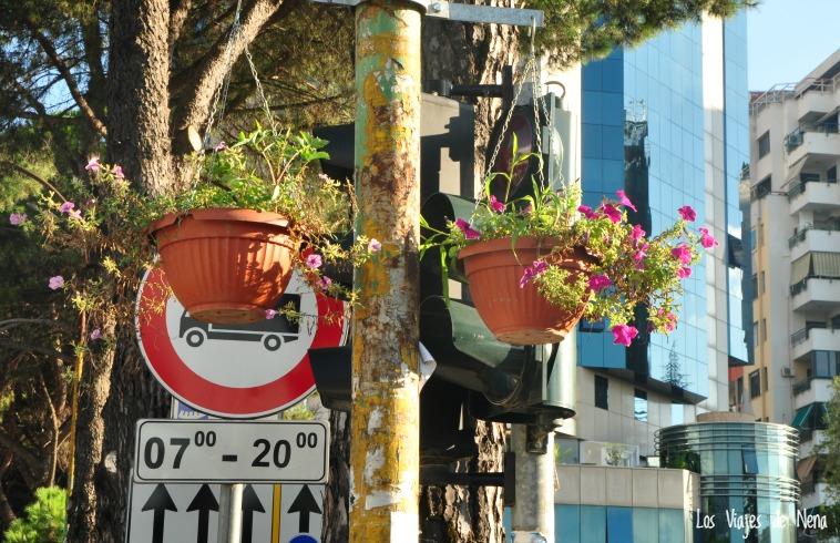 Esto, sinceramente, me deja sin palabras. Haaarmosas las macetas, divinas las flores, pero...estás seguro que el mejor lugar es justo bien adelante del semáforo, de la señal de camiones, y del horario de estacionamiento? Sí? De verdad?