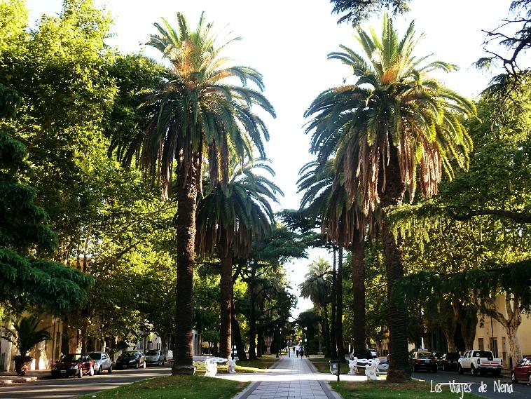 El Boluevar Oroño es una de las calles más importantes de la ciudad. Conserva parte de la arquitectura más antigua de la ciudad y llega al río. Los días feriados, al final del boulevard, hay feria de artesanos, productores de alimento, piestos de antigüedades y feria americana.