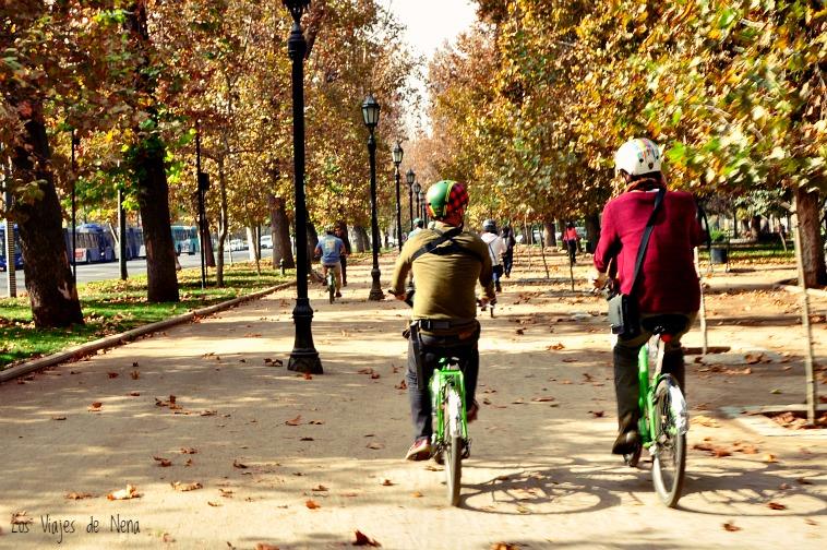 Andar en bici y sacar fotos a la vez es un arte que todavía no domino. Igual lo intenté...