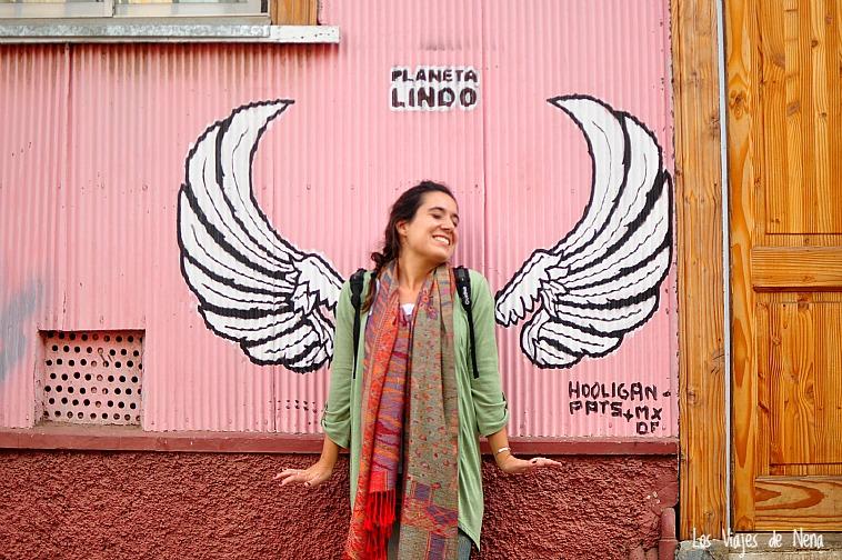 valparaiso_arte_callejero_laura_lazzarino_4