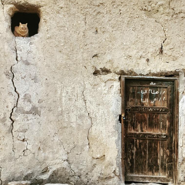 siwa_egipto_laura_lazzarino6