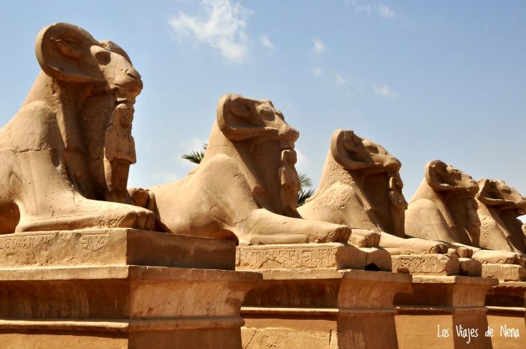 templos_luxor_aswan14