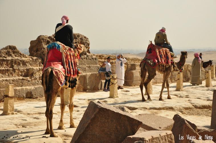 viajar_a_egipto23