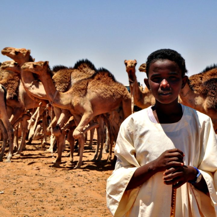 que-ver-en-sudan11