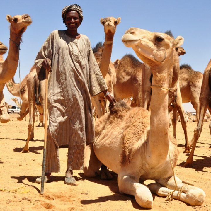 que-ver-en-sudan12