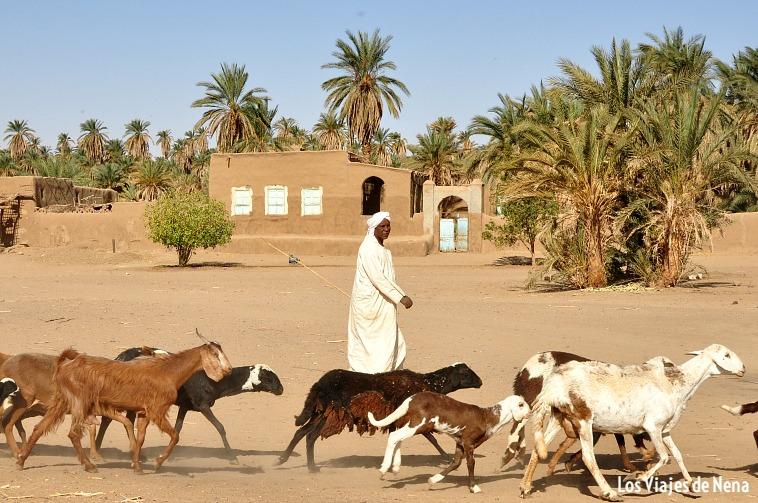 viajar_a_sudan_laura_lazzarino2