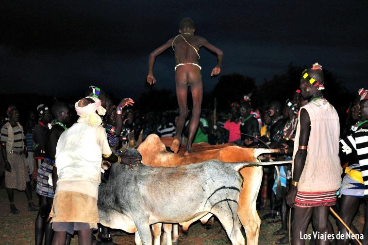 Ceremonia del salto del toro, en el Valle del Omo