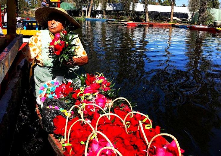 florista en xochimilco