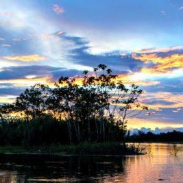 rio de iquitos