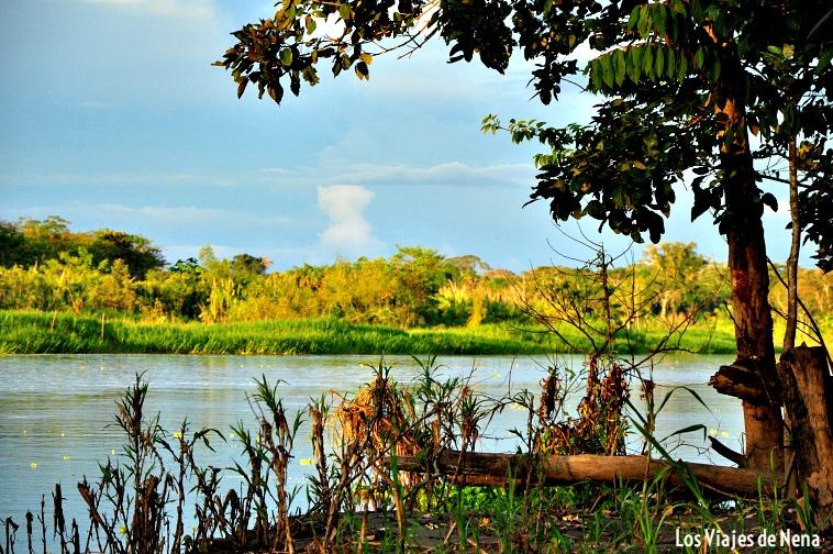 vista navegando por el río Amazonas