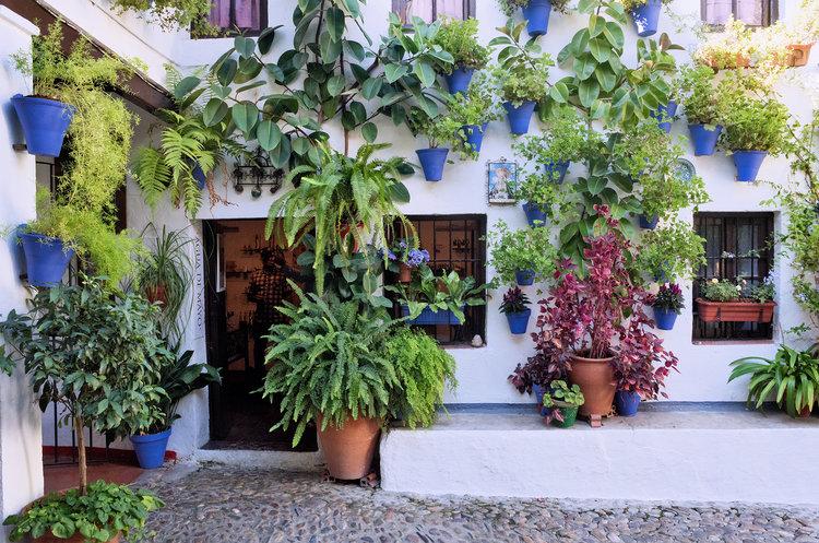 Los patios de Córdoba son una fiesta a la fotografía, que no pueden perder.