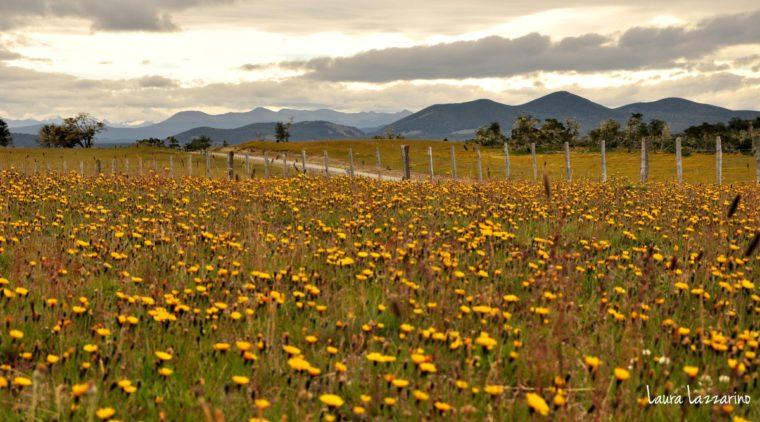 Patagonia y sus paisajes es el último de esta lista de mejores destinos para viajar en 2021
